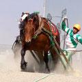 帯広市 帯広ばんえい競馬場 2010.5.30 第五レース模様