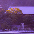 宮島フェリー船上から望む五重塔と千畳閣 【2012.2.3】