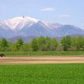 中札内村から望む日高山系 【撮影:2010.5.30】