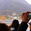宮島渡船フェリーにて 【2012.11.23】