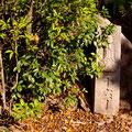 """弥山大聖院ルート登山途中にある""""十六丁石"""" 【撮影:2010.9.16】"""