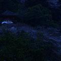 夕暮れ時の多宝塔 【2013.3.24】