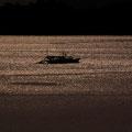 底引き網漁風景  廿日市市阿品 【撮影:2011.2.9】