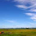 撮影:2011.07.18  牧草地の記憶 ~天塩町 青空と雲と牧草地~