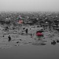 極楽寺山 蛇の池 【2012.07.06】