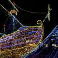 広島市中区 平和大通り 『ひろしまドリミネーション』その1 【撮影:2010.11.19】