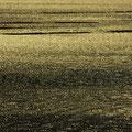 瀬戸内海 牡蠣筏の引っ越し 【2013.01.25】