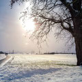 48|365 17.01.2016 - Winterlandschaft in Bergrheinfeld