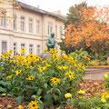 351|365 15.11.2016 - Bunsendenkmal, Heidelberg