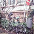 83|365 21.02.2016 - Keine Fahrräder abstellen! (Heidelberg-Neuenheim)