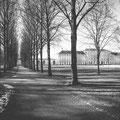 57|365 26.01.2016 - Schlosspark Schleissheim