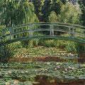 橋の下のシェードがねらい目。風に揺れる柳の枝が映る、スイレンが切れるオープンエリアのエッジもあやしい。