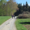 Unser Weg führt bis zum Wald hinauf auf dem Wanderweg bevor wir anfangs Wald links abzweigen