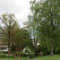Blick in den Löwpark Pt. 12