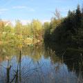 Der Mühliweiher bei der Bergermühle