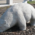 Granit Eisbär