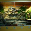 Terrarium 150 x 80 x 100cm