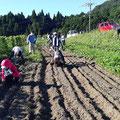 8月16日、蕎麦の種まき