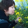 美女と花(笑)