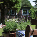 Amrum - großer Garten vor dem Ferienhaus