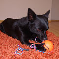 06.10 I'll destroy this toy!