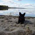 08.2008 Pie Saukas ezera Sēlijā