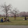 芝生が広くて、家族連れには持って来いの公園です。