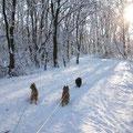 Winterweg zum Zweiten