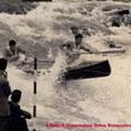 Bruno Kerbl / Wolfram Steinwendtner, Slalom Weltmeisterschaften 1955 Tacen