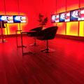 TV-Stangen Uniprof24