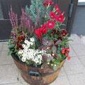 2011冬・クリスマス寄せ植え