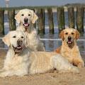 Marlon, Milla und Lou