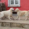 Leopold und Milla