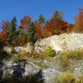 Steinbruch in der Weiler Halde        Foto: Martin Knaus