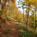 Wanderweg             Foto: Martin Knaus