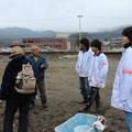 津波浸水区域にめん羊を放牧し、まちの景色を明るくするプロジェクト