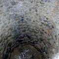 Blicke in die Tiefe des Eiskellers