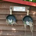 Die Hühner-WG von Familie Derwell in Buchholz