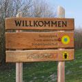 Eintauchen in den Nationalpark und den Darßwald.