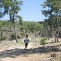 In der antiken Stadt Seleucia