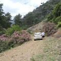Oleandertal -  auf dem Weg ins Gebirge