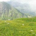 der lange Abstieg nach Brigsau dauert noch mal 2,5h