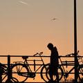 2014_amsterdam/nl ©mettler