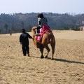 2008 Wüste in Totori mit Kamelen