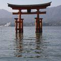 2015 Gruppenreise das große Torii von Miyajima