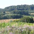 à la jonction la plaine de Saint Quentin et des collines de Noyon gite campagne Saint Quentin Aisne Laon Noyon Compiegne Peronne