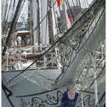 Sail 2008 Den Helder