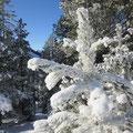 Fantastische Winterstimmung