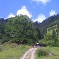 Ober Honegg