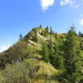 Kurzer Steilabstieg zum Teufimattsattel
